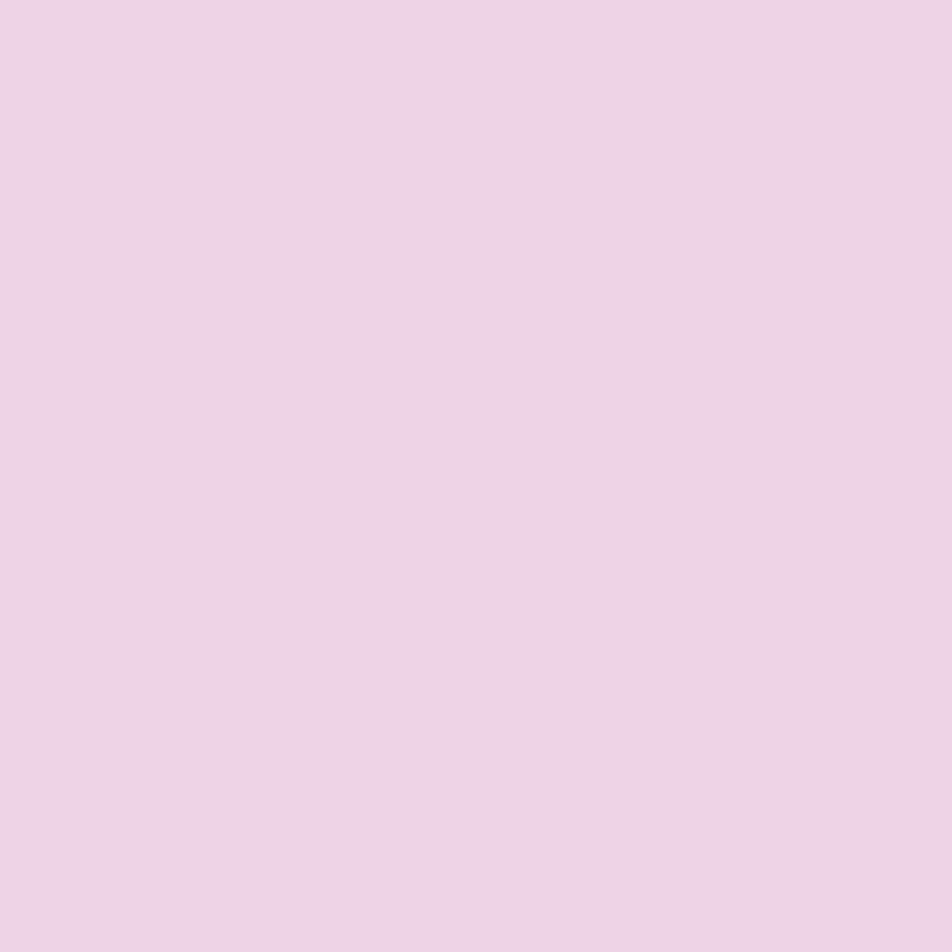 63 - rosa